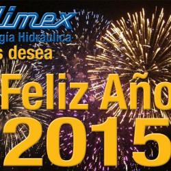 FELIZ AÑO 2015 !!!
