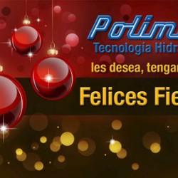 FELICES FIESTAS !!!
